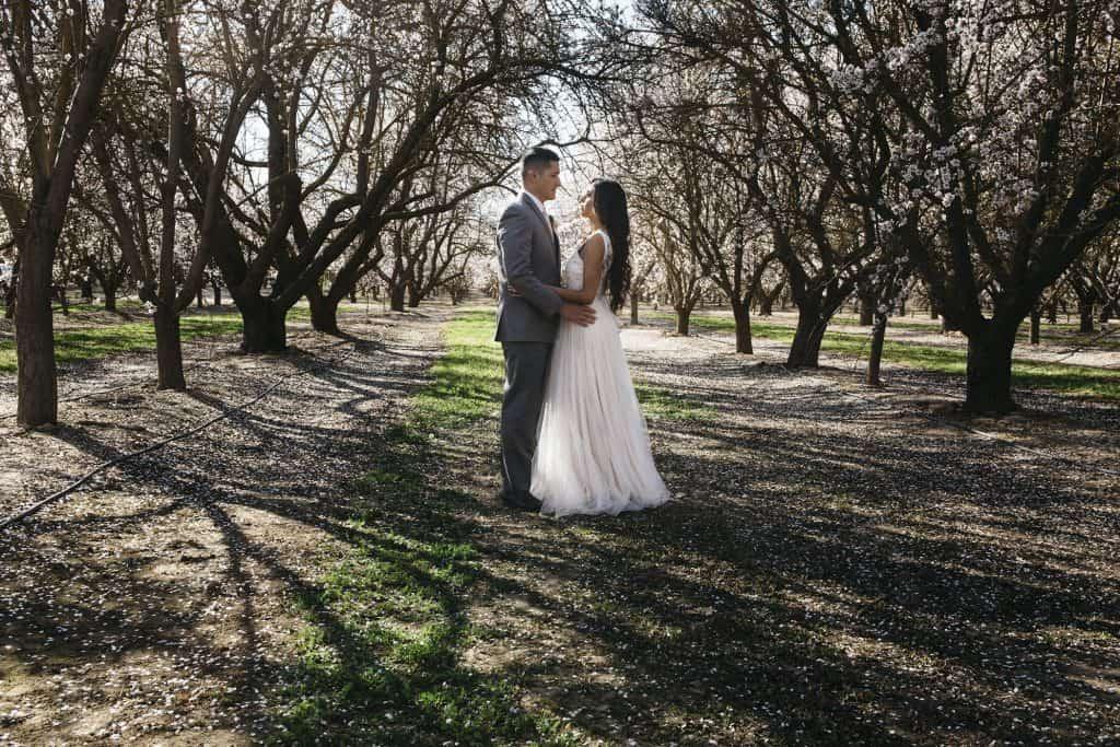 almond orchard wedding ideas
