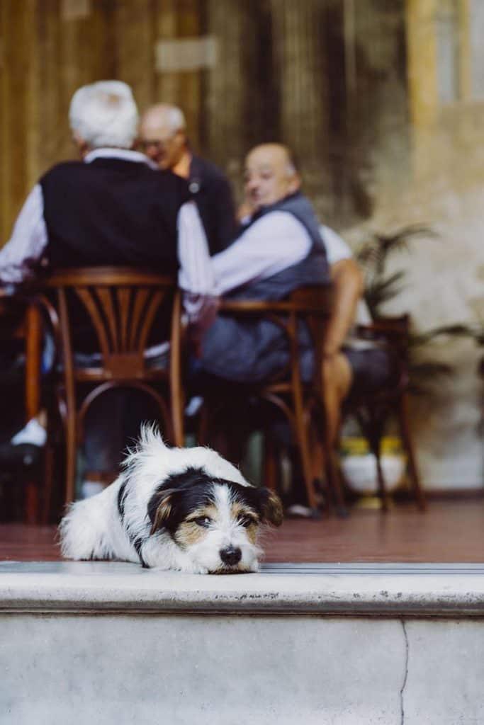 destination wedding photography in Sorrento