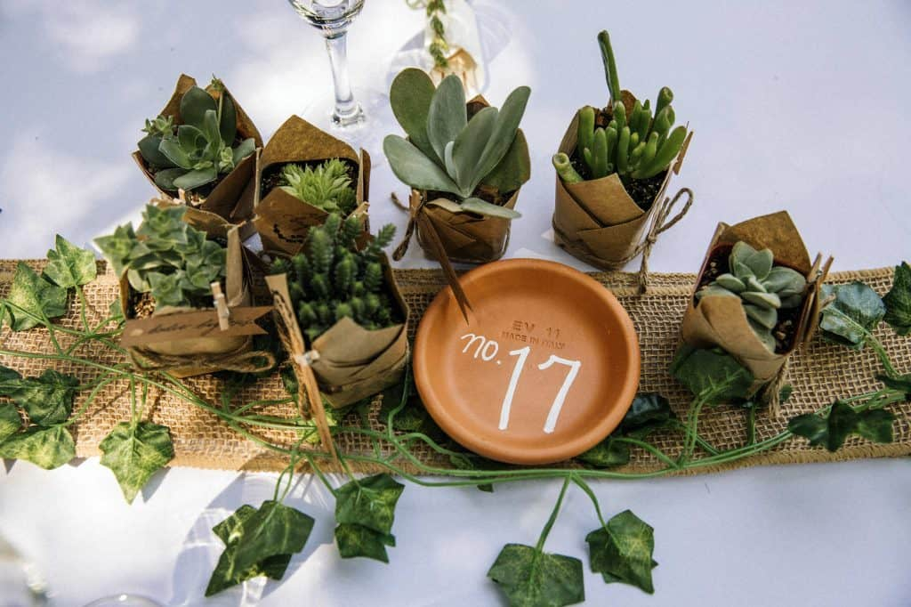 Table setting at rustic wedding in SoCal