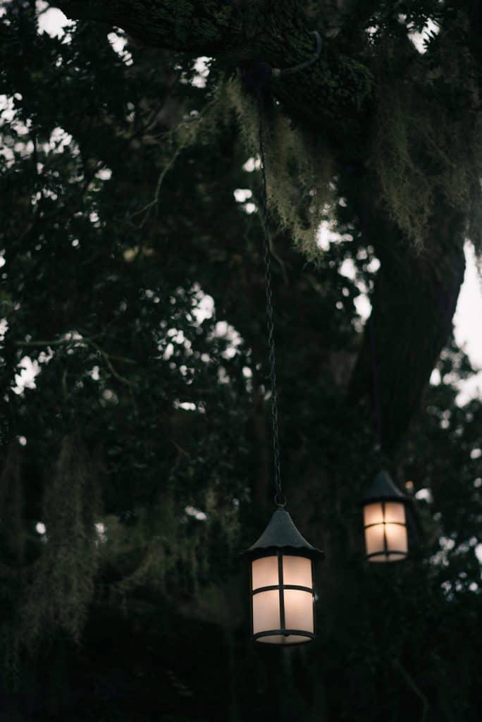 southern oaks plantation