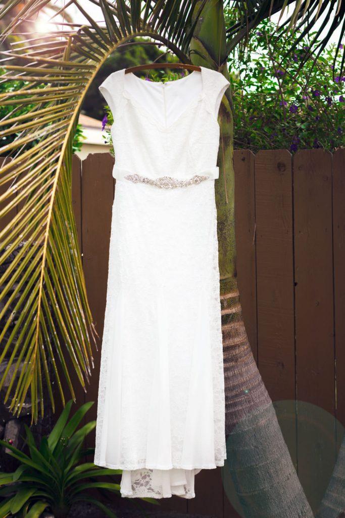 wedding dress in a palm tree