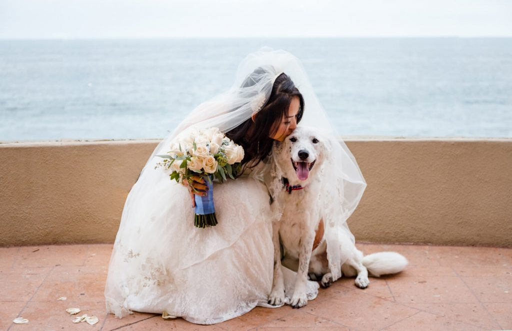 best wedding photos 2019