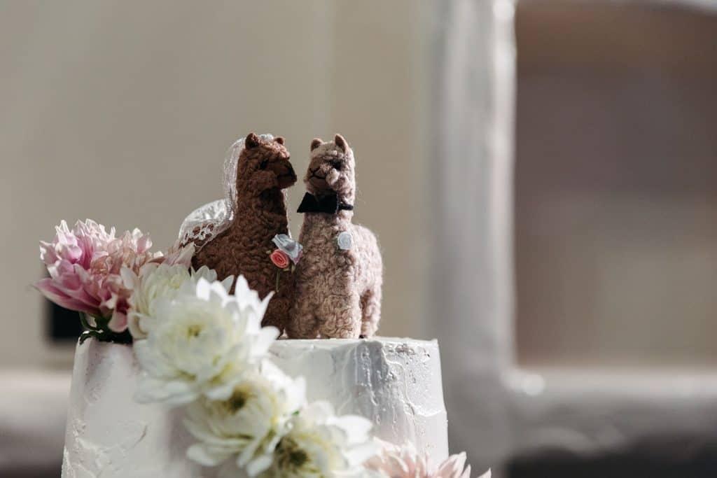 llama wedding cake topper