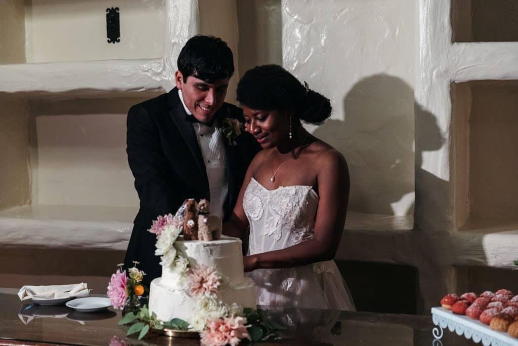 cutting a llama wedding cake